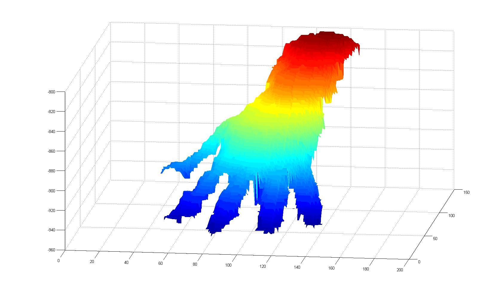 Hand mesh.jpg